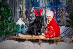 Ziemassvētku rotājums fotostudijā