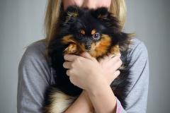 Studijas foto ar suniem