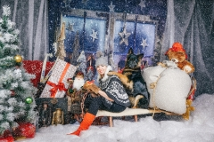 Ziemassvētku fotostudija.